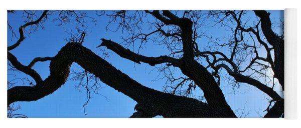 Tree In Rural Hills - Silhouette View Yoga Mat