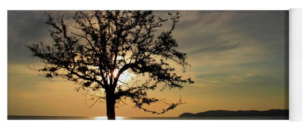 Tree In Sunset Yoga Mat