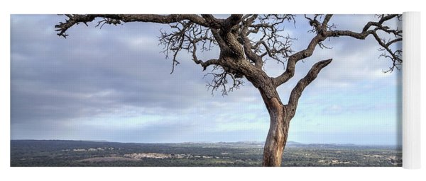 Yoga Mat featuring the photograph Tree On Enchanted Rock - Square by Todd Aaron