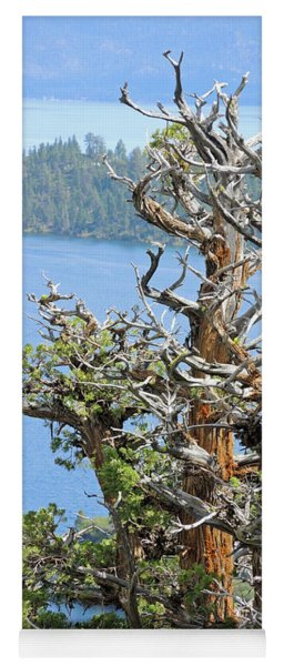 Tree Over Emerald Cove Yoga Mat