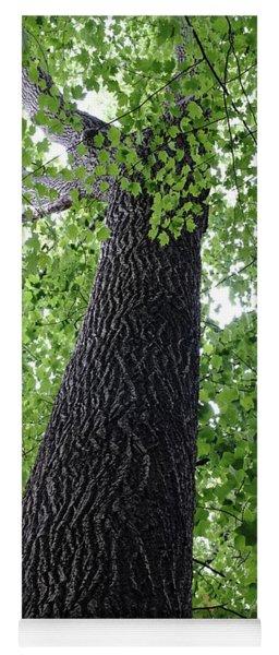 Tree Spirit Yoga Mat