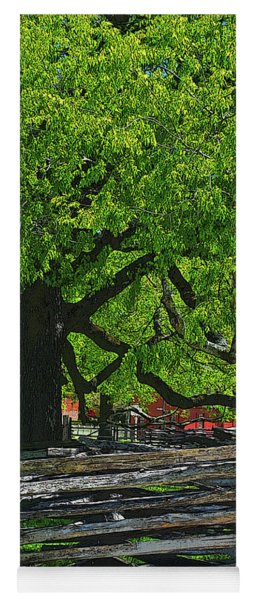 Tree With Colonial Fence Yoga Mat
