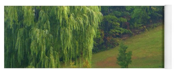 Yoga Mat featuring the photograph Trees Along Hill by Rockin Docks Deluxephotos
