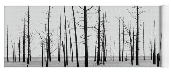 Trees Die Off Yoga Mat