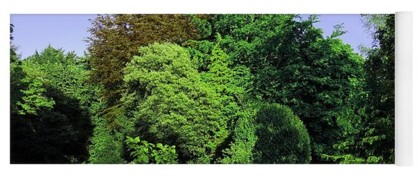 Treescape In Vivid Greens Yoga Mat