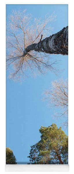 Treetops_the Sky Is The Limit  Yoga Mat