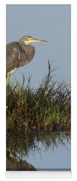 Tri-colored Heron And Reflection Yoga Mat