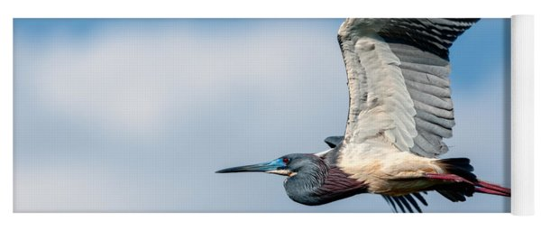 Yoga Mat featuring the photograph Tri-colored Heron In Flight by Christopher Holmes