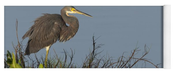 Tri-colored Heron In The Morning Light Yoga Mat