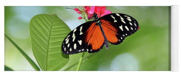 Tropical Hecale Butterfly Yoga Mat