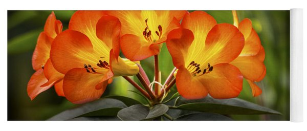 Tropical Rhododendron Yoga Mat