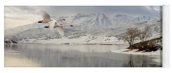 Trumpeter Swans Wintering At Deer Creek Yoga Mat