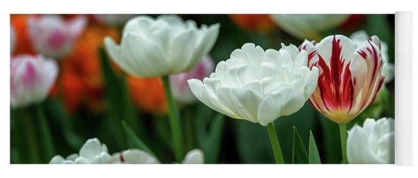 Yoga Mat featuring the photograph Tulip Flowers by Pradeep Raja Prints