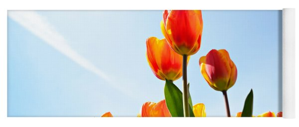 Tulips From A Low Point Of View Yoga Mat