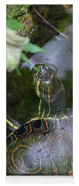 Turtle Getting Some Air Yoga Mat