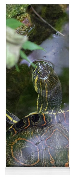Yoga Mat featuring the photograph Turtle Getting Some Air by Raphael Lopez