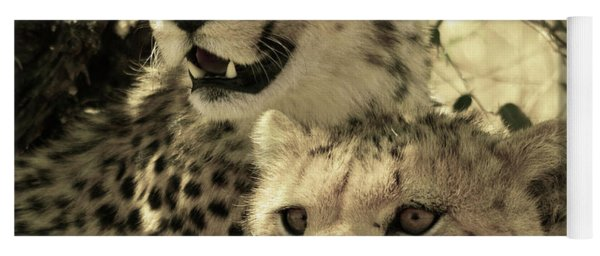 Two Cheetahs Yoga Mat