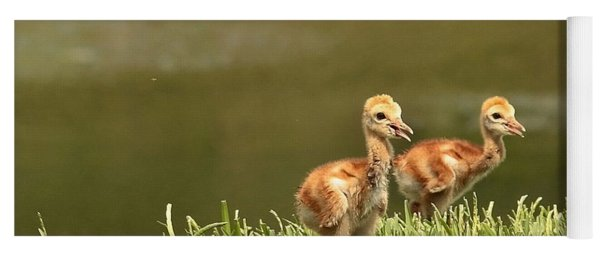 Two Chicks Yoga Mat