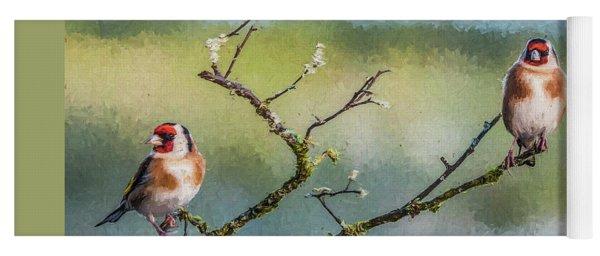 Two European Goldfinches Carduelis Carduelis Yoga Mat