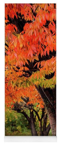 Two Fall Trees Yoga Mat