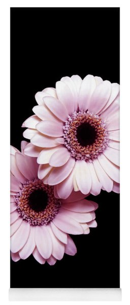 Two Gerberas On Black Yoga Mat