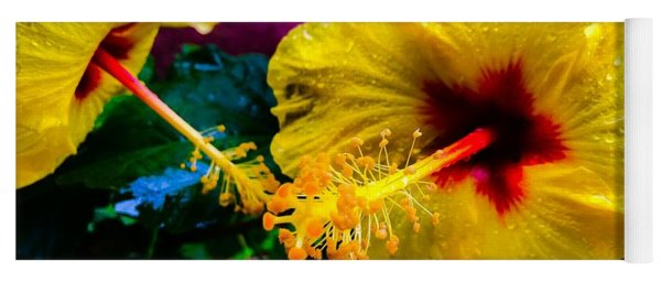 Two Hibiscus In Yellow Yoga Mat