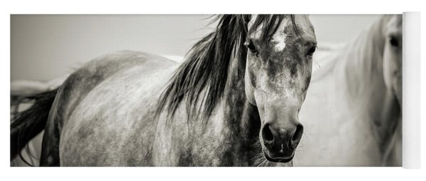 Two Horses In Black And White Yoga Mat