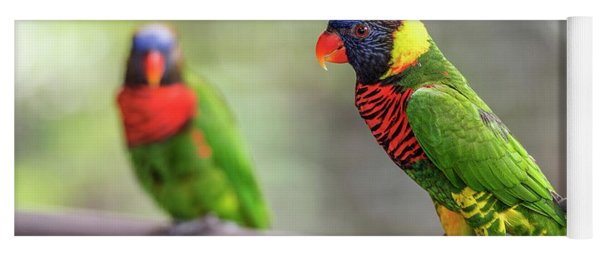 Yoga Mat featuring the photograph Two Parrots by Pradeep Raja Prints