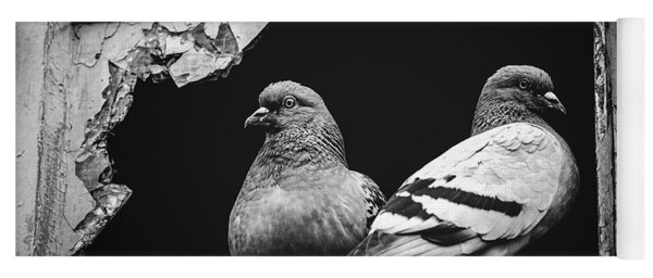Two Pigeons Sitting Together In A Broken Window. Yoga Mat