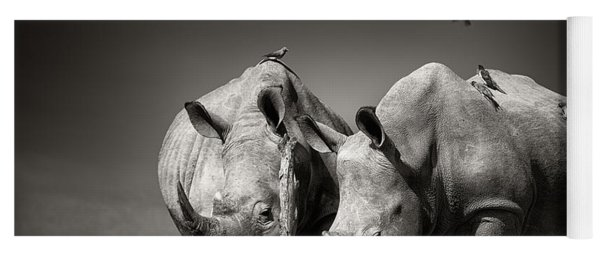 Two Rhinoceros With Birds In Bw Yoga Mat