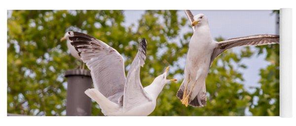Two Seabird Fighting Yoga Mat