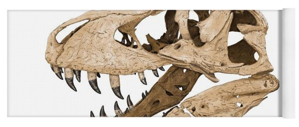 Tyrannosaurus Skull Yoga Mat