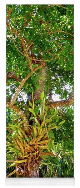 Under A Tropical Tree M Yoga Mat