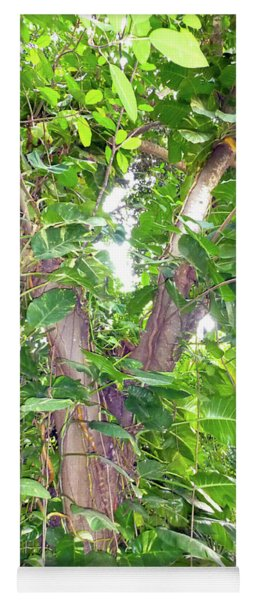 Under A Tropical Tree With Vines Yoga Mat