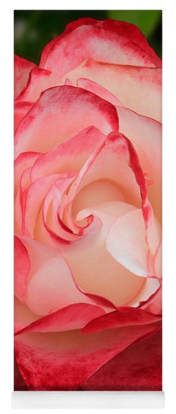 Unfolding Rose In Red And White Yoga Mat
