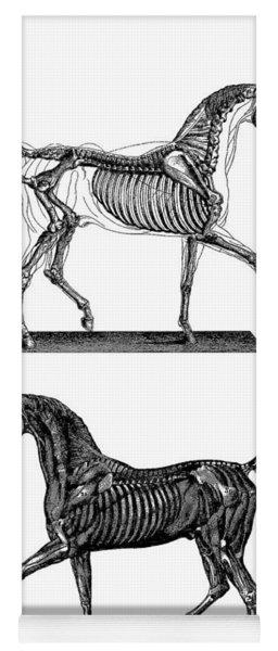Unicorn Anatomy Yoga Mat
