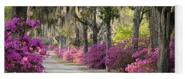 Unpaved Road With Azaleas And Oaks Yoga Mat