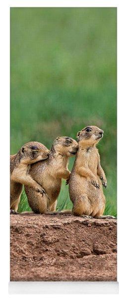 Utah Prairie Dogs Cynomys Parvidens Wild Utah Yoga Mat