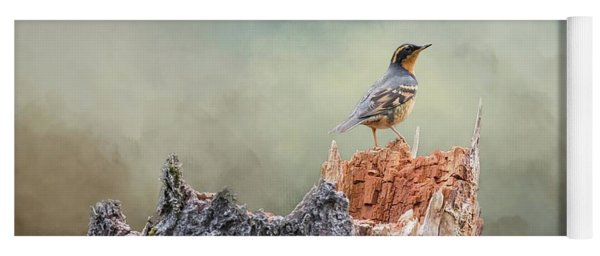 Varied Thrush On A Dead Tree Yoga Mat