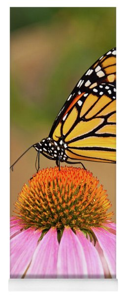 Monarch Butterfly On A Purple Coneflower Yoga Mat