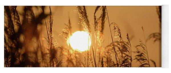 View Of Sun Setting Behind Long Grass B Yoga Mat