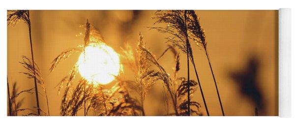View Of Sun Setting Behind Long Grass C Yoga Mat