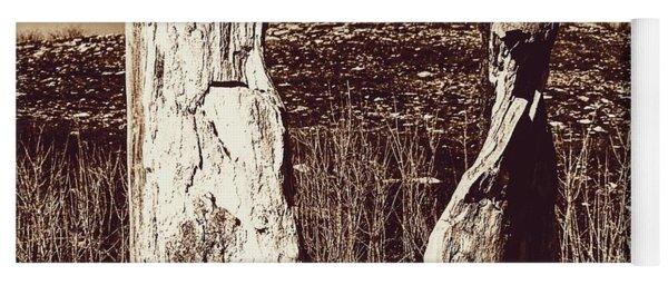 View Through The Hollow Tree Yoga Mat