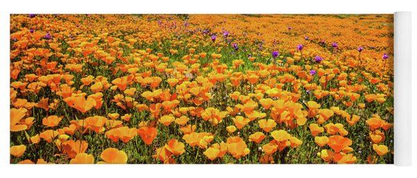 Walker Canyon Wildflowers Yoga Mat