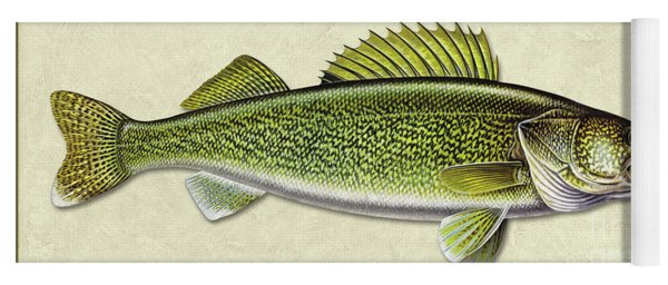 Walleye Id Yoga Mat