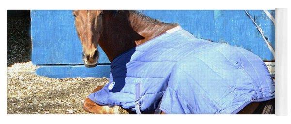 Warm Winter Day At The Horse Barn Yoga Mat