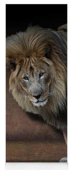 Yoga Mat featuring the photograph Was That My Cue? - Lion On Stage by Debi Dalio
