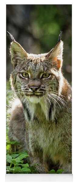 Watchful Mama Lynx Yoga Mat