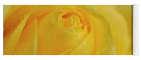 Water Drops On Yellow Rose. Yoga Mat