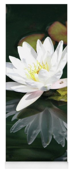 Yoga Mat featuring the photograph Water Lily And Reflection by Trina Ansel